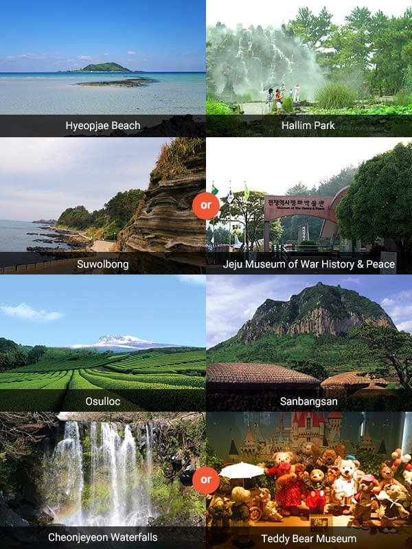 Jeju Local Tour Package